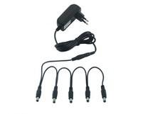 RockPower NT 50 adapter + ötös elosztó